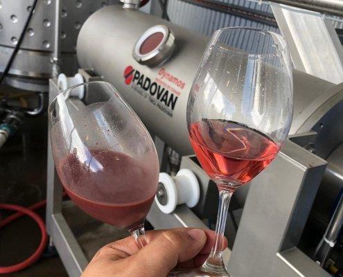 Come si fa il vino rosé