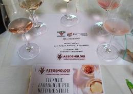 Tecniche Enologiche per definire stili e profili dei vini rosé